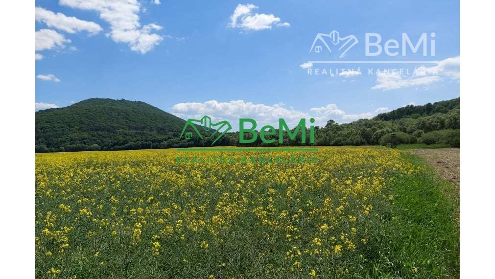 Orná pôda na predaj Veľký Šariš ID 031-14-TAKa